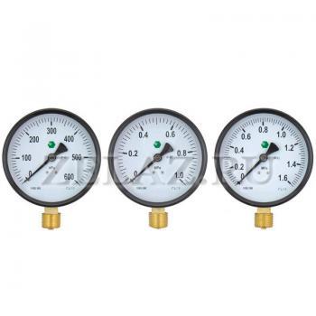 Манометр 1,6 МПа (16 бар)  100мм; М20х1,5 - фото